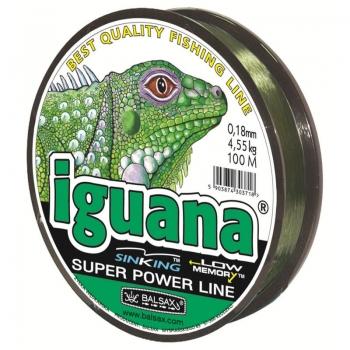 Balsax_iguana.jpg