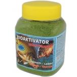 Bioaktivaator STIL Küüslauk 400ml BIC010