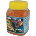 Bioaktivaator STIL Karp 400ml BIK003